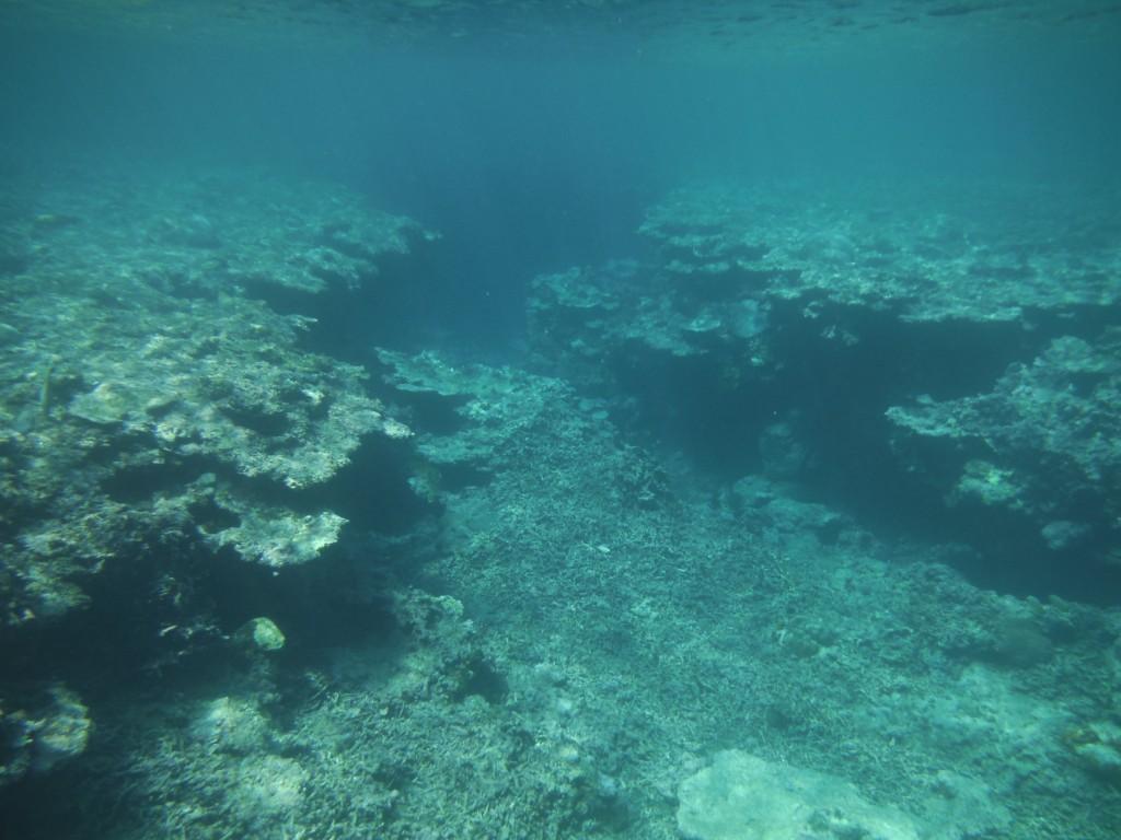 青の洞窟前の海