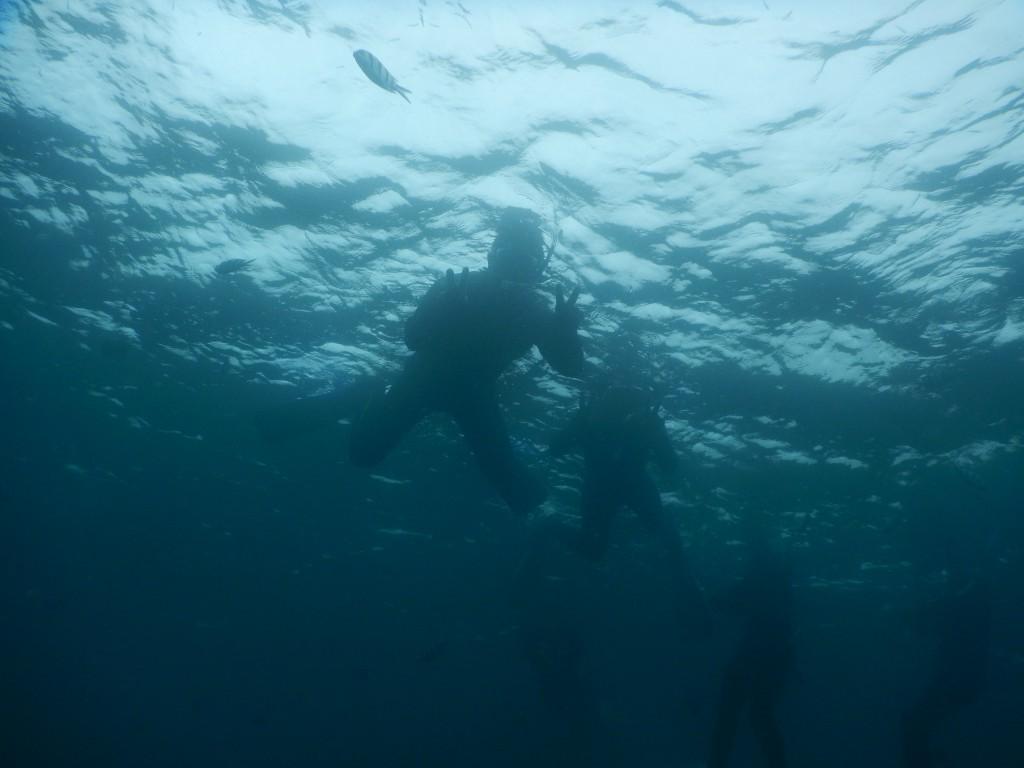 大崎でシュノーケリング 海中から記念撮影
