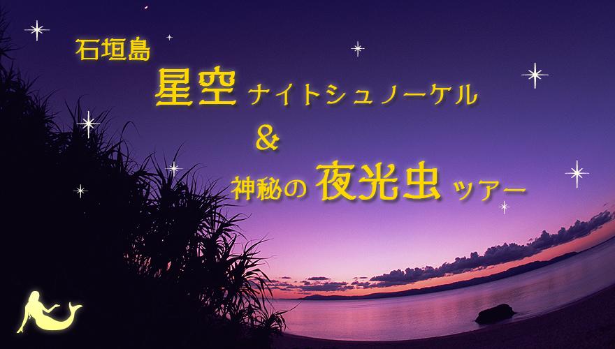 星空ナイトシュノーケル&神秘の夜光虫ツアー
