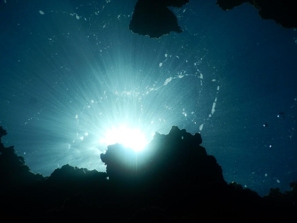 水中から上を見上げると太陽が光輝いている