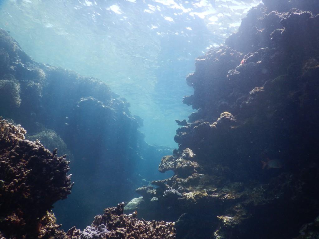 1ポイント目の海の中がすごく光り輝いてる!