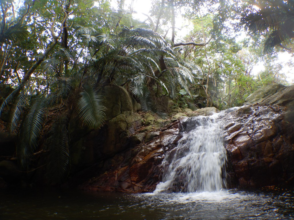 石垣島の滝壺