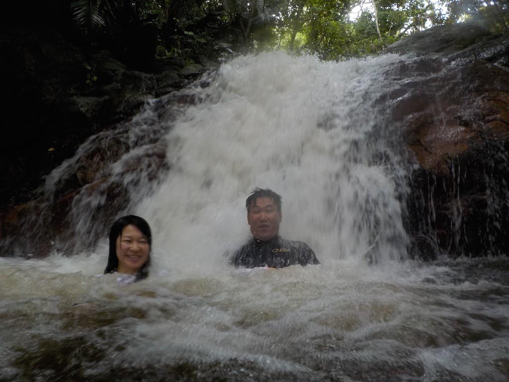 台風などの影響で水かさが増した滝